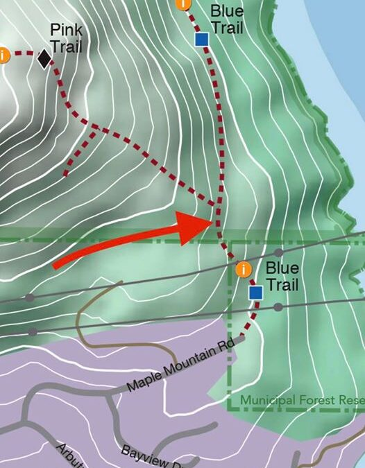 A warning for trail users of the Blue Trail on Maple Mountain.