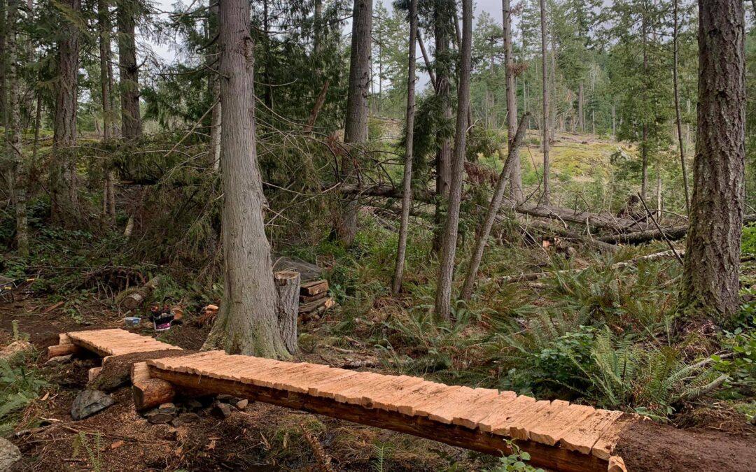 New cedar bridge on Xylem